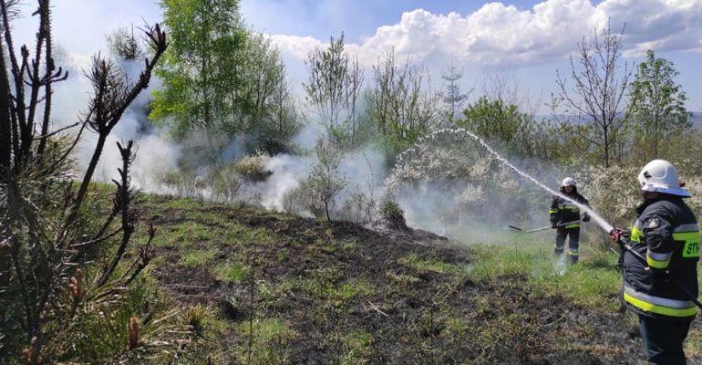 Pożar traw na Gruszce. Skrajnie nieodpowiedzialne zachowanie (ZDJĘCIA)