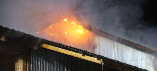 Pożar na Kiczurach! Akcja strażaków (VIDEO, ZDJĘCIA)