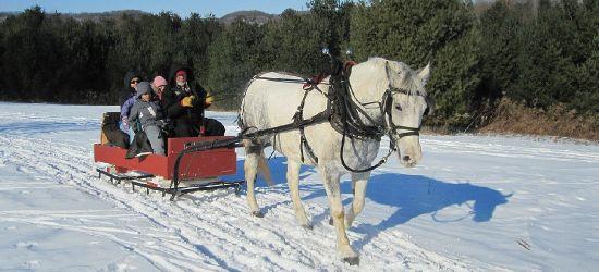 Dziecięce kolędowanie, zabawy na śniegu, kulig i ognisko