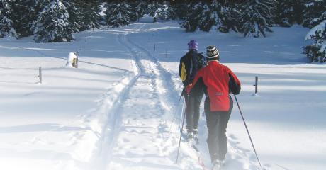 NASZ PATRONAT: V Memoriał Jerzego Batrucha czyli rywalizacja narciarzy biegowych