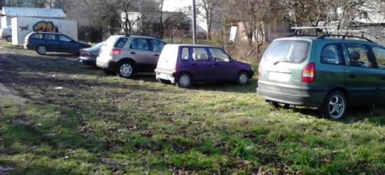 PARKOWANIE PO SANOCKU: Dzikie parkingi rosną jak grzyby po deszczu (ZDJĘCIA)
