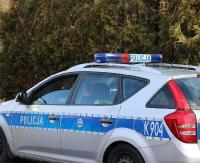 KRONIKA POLICYJNA: Ukradł rasowego kota, groźby w rodzinie i zniszczony samochód