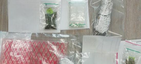 Wybrali się na wycieczkę w Bieszczady z narkotykami (ZDJĘCIE)