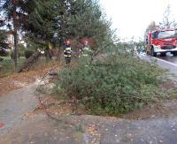 Uszkodzony dach na Domu Turysty, powalone drzewa i połamane gałęzie. Strażacy interweniują, a zgłoszeń przybywa (ZDJĘCIA)