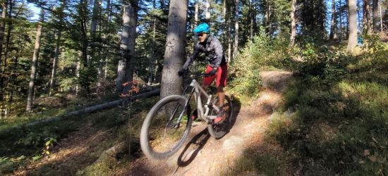 Ekstremalnie rowerem po lesie! Otwarto nowe trasy (VIDEO, ZDJĘCIA)