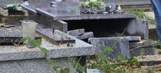 """Powalone drzewo na cmentarzu. """"Mogło być gorzej"""" (FOTO)"""