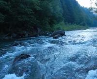 BIESZCZADY: Na ochłodę… szumiąca górska Wetlinka (FILM)