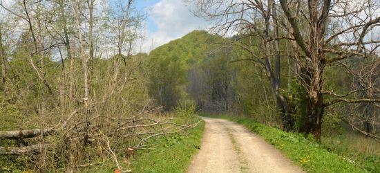 BIESZCZADY: Caryńskie – tereny nieistniejącej wsi (FOTO)