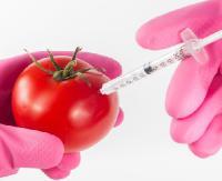 """OTRZYMALIŚMY: """"GMO zagraża bezpieczeństwu żywnościowemu naszego kraju"""". Wyraź sprzeciw. Podpisz petycję!"""
