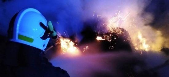 Palą się trawy i sterty gałęzi. Mnóstwo akcji strażaków (ZDJĘCIA)