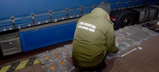 GRANICA: Przemycał jantar wart blisko 130 tys. złotych