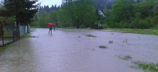 Wzrosty poziomu wód. Lokalnie przekroczone stany ostrzegawcze