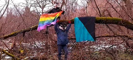 """Feministki przenoszą rewolucję do lasu! """"Wilczyce"""" protestują przeciwko wycince"""