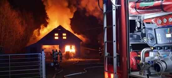 Pożar w Zagórzu. Ogromne straty materialne (NOWE ZDJĘCIA)