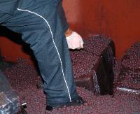 Papierosy z przemytu w wagonach z rudą żelaza (ZDJĘCIA)