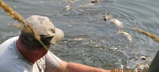 Trwa walka z kłusownikami na Sanie. 40 kg ryb w 50 metrowej sieci (ZDJĘCIA)