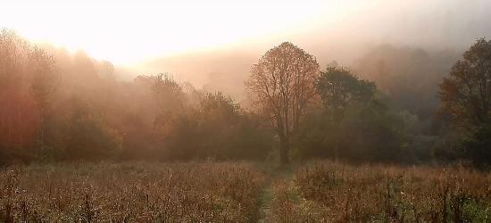 BIESZCZADY: Jesień tuż za rogiem (FILM)