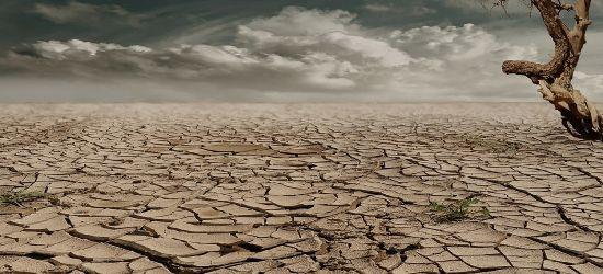 Polska jak pustynia? Inwestycje retencyjne na Podkarpaciu (VIDEO)