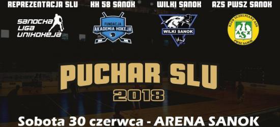SOBOTA: I edycja Pucharu Sanockiej Ligi Unihokeja w Arenie (ZDJĘCIA, HARMONOGRAM)