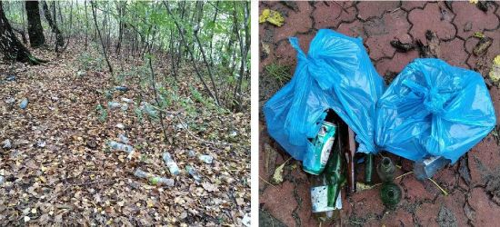 SANOK. Demokraci zebrali śmiecie w parku. SPGK interweniuje. Szybka riposta (ZDJĘCIA)