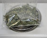 SANOK: Susz roślinny i sadzonki konopi znalezione w mieszkaniach