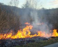 KRONIKA STRAŻACKA: Uszkodzony dach, podtrucie tlenkiem węgla i płonące trawy