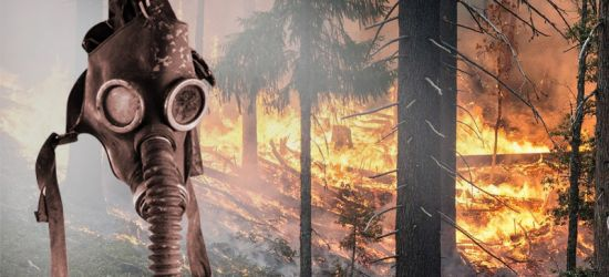 Walka z pożarami w Czarnobylu. Pomiary z Sanoka. Służby uspokajają