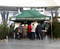 Pachnące jodły, jemioła i naturalny miód. Leśnicy prezentowali walory turystyczne Lasów Bieszczadzkich (ZDJĘCIA)