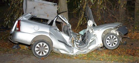 Uderzył w drzewo, pojazd roztrzaskany! Cud, że żyje! (FOTO)
