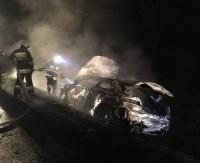 Samochód wjechał do rowu i stanął w płomieniach. Kierowca chciał uniknąć zderzenia z sarną (ZDJĘCIA)