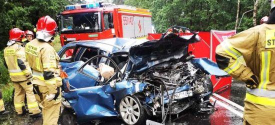 Sprawca tragicznego wypadku aresztowany. Czy odpowie jak za zabójstwo? (ZDJĘCIA)