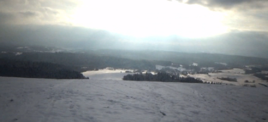 W poszukiwaniu zimy. Szaleństwo na sankach w Bezmiechowej! (VIDEO)