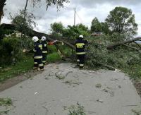 KRONIKA STRAŻACKA: Samochodem w przepust i zablokowane drogi przez powalone drzewa