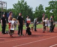 Psy polskiej Służby Celnej na międzynarodowych zawodach na Ukrainie