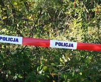 Tragiczny wypadek w lesie. Nie żyje młody mężczyzna uderzony przez spadające drzewo
