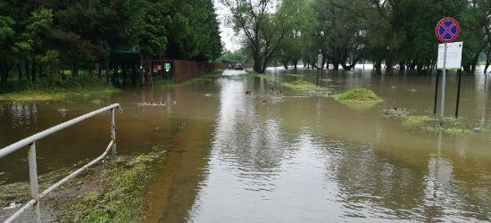 Woda wdziera się na działki na Sosenkach. Jest blisko basenów (VIDEO, ZDJĘCIA)