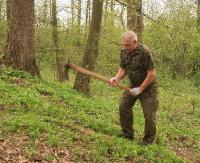 Do tej pory posadzono ponad 11 mln młodych drzewek