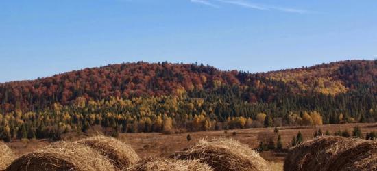 BIESZCZADY24.PL: Kulturalna jesień w Sanoku i w regionie