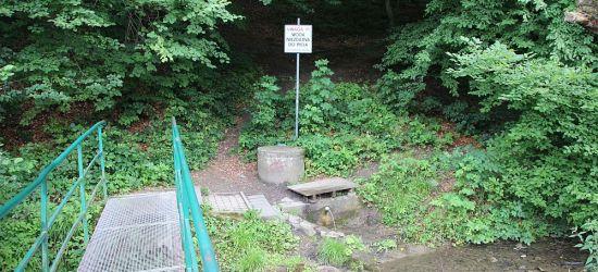 SANOK: Kolejne badania wody w źródełku na Liszną