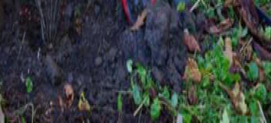 Bez pobłażania dla quadowców w lasach