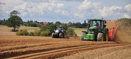 Premie dla młodych rolników i restrukturyzacja małych gospodarstw – wnioski do 30 czerwca