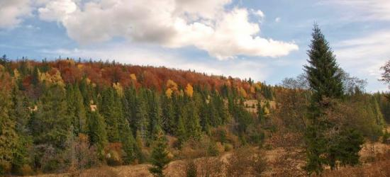 BIESZCZADY24.PL: Kulturowa jesień w Sanoku i w regionie