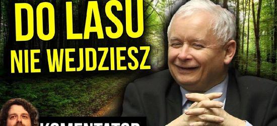 KONTROWERSJE: Zakaz Wstępu do Lasów. Zamknięte Parki – Komu To Służy?