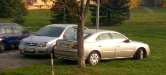 PARKOWANIE PO SANOCKU: Skończyły się miejsca parkingowe? Jest jeszcze trawnik! (ZDJĘCIE)