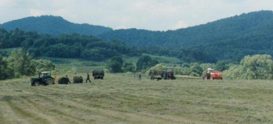BIESZCZADY: Sianokosy na śródleśnych łąkach (ZDJĘCIA)