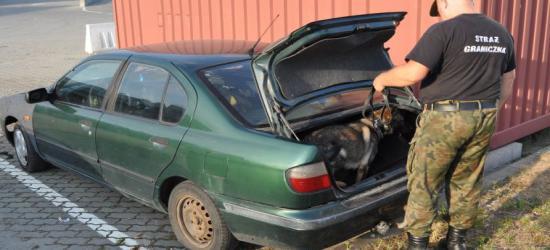 REGION: Kilogram amfetaminy w nadkolu pojazdu. Czujna Beti (ZDJĘCIA)