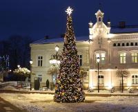 Miasto zaczyna nabierać świątecznego klimatu. Na rynku błyszczy już choinka (ZDJĘCIA)
