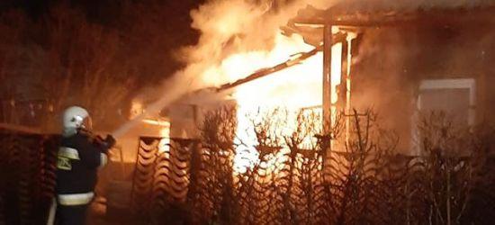 POŻAR ZAGÓRZ: Zobacz jak z pożarem walczyli strażacy! (VIDEO, ZDJĘCIA)