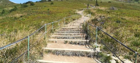 """BIESZCZADY: Więcej """"schodów"""" na szlakach. Prace w 10 miejscach parku"""