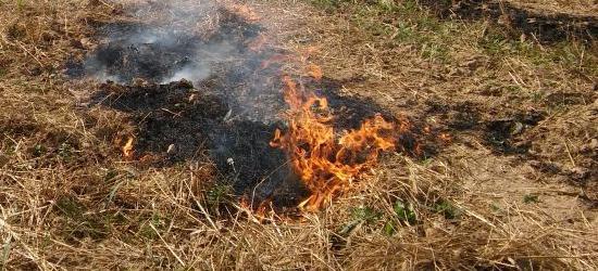 Pożar nieużytków rolnych na działkach o powierzchni ok. 5 ha (ZDJĘCIA)